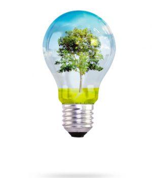 https://nextenergysolution.com/wp-content/uploads/2019/05/2102-2-300x350.jpg